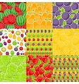 Seamless Pattern Background from Different Fruits vector image