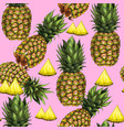 summer seamless pattern with hand-drawn pineapple vector image