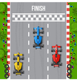 Race Finish Top View vector image