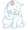Cute white cat washes vector image