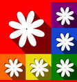 flower sign set of icons vector image