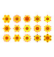 set of vintage yellow flowers vector image
