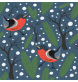 bird seamless pattern bullfinch birds vector image