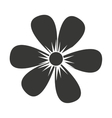 beautiful flower isolated icon design vector image