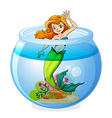 A mermaid inside the bowl vector image vector image