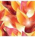 rose petal vector image