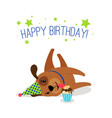 birthday puppy portrait vector image