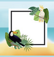 poster tropical leaves palm beach background vector image