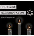 Holocaust Remembrance Day vector image