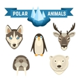 Polar Animals Set vector image