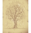 Tree on old paper vector image