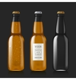 Sample of empty beer bottles vector image
