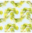 Yellow mimosa background vector image