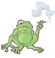 Smoking Frog vector image vector image