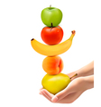 Hands holding a pyramid of healthy fruit Diet vector image