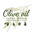 olive branch with logo vector image