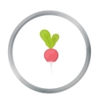 Radish icon cartoon Singe vegetables icon from vector image