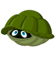 Cartoon turtle hides in its shell vector image