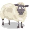 sheep farm animal cartoon vector image