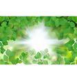 Summer fresh leaf green leaves with sun rays vector image
