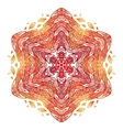 Fiery red and orange doodle style feathers vector image