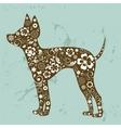 Russian toy terrier vector image