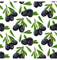 seamless pattern olive branch on paperfor vector image