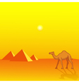 Camel and Pyramids vector image