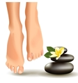 SPA concept with realistic female feet frangipani vector image