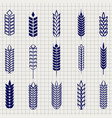 grain ears collection on notebook page vector image