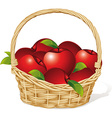 Red apples in a basket isolated on white vector image