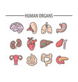 human organs medical flat isolated icons vector image