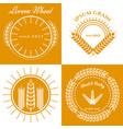 grain ears concept logo design collection vector image