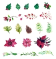 Set of watercolor flowers and berries vector image