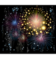 fireworks in the sky vector image vector image