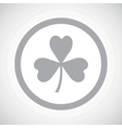 Grey clover sign icon vector image