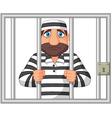Prisoner behind bar vector image