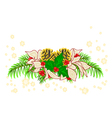 Christmas decoration white poinsettia and holly vector image