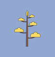 flat icon design collection simple tree vector image vector image
