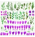 Set of bright hand paint flower and leaves vector image