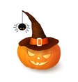 Cartoon Halloween 3d pumpkin with witch hat vector image