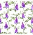 Seamless pattern wildflowers bindweed bird vetch vector image