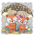 two cute cartoon foxes with umbrella vector image