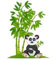 Cartoon panda sitting and eating bamboo vector image vector image
