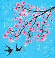 floral branches vector image