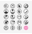 Set icons restaurant vegetarian vegan vector image