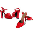 two pairs of fashion women shoes vector image
