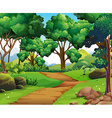 Nature scene with hiking track and trees vector image