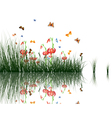 grass with reflections in water vector image