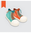 Pair of hipster gumshoes vector image